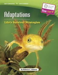 kc_ls_adaptations
