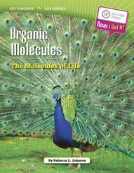 kc_ls_organicmolecules
