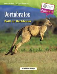 kc_ls_vertebrates