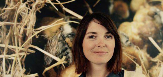 Hollis Woodard, a UC Riverside entomologist, studies bumblebees in extreme environments.